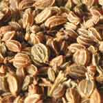 Parsley-Seeds-Wild-Celery-Seeds-अजमोद-खुरासानी-अजवायन-Ajmod-Spices-Names-in-English-Hindi-Meri-Rasoi